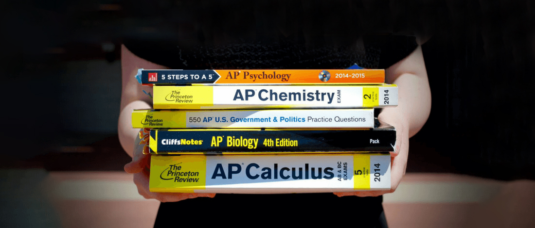 Best AP Chem Review Book